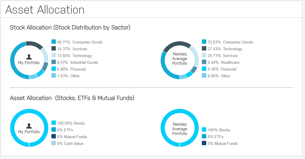 MoneyByRamey.com Dividend Portfolio Asset Allocation
